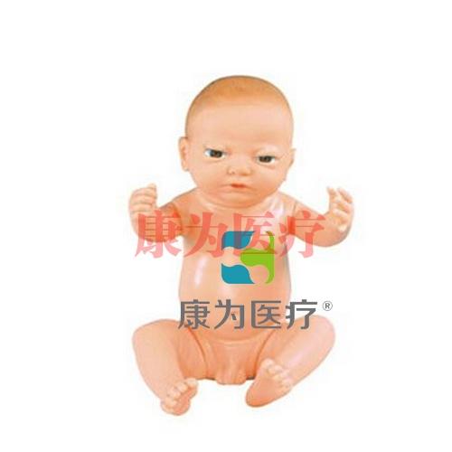 """""""康为医疗""""高级满月婴儿模型(男婴、女婴任选)"""