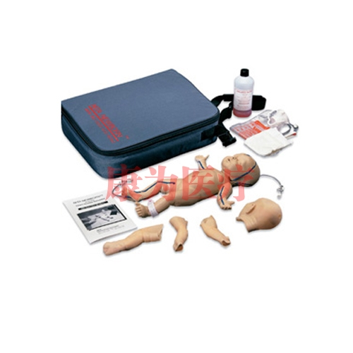 德国3B Scientific®皮肤和静脉模型