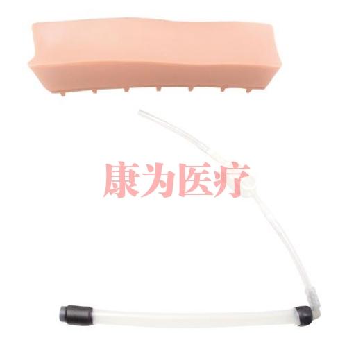 德国3B Scientific®老年人LOR(无阻力)腰椎插件,用于硬膜外脊椎注射训练威廉希尔