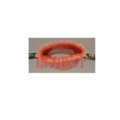 德国3B Scientific®湿润阴道断端,用于腹腔镜手术技能训练