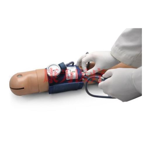 德国3B Scientific®血压训练系统,带Omni装置