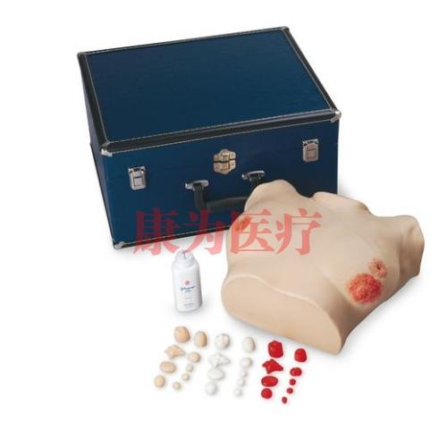 德国3B Scientific®高级胸部检验威廉希尔