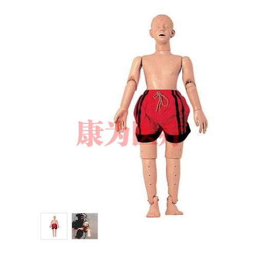 德国3B Scientific®水中救护威廉希尔,带复苏功能(青少年),121公分