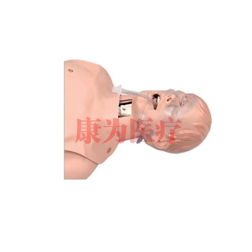 德国3B Scientific®高度困难气管插管训练威廉希尔(半开放)