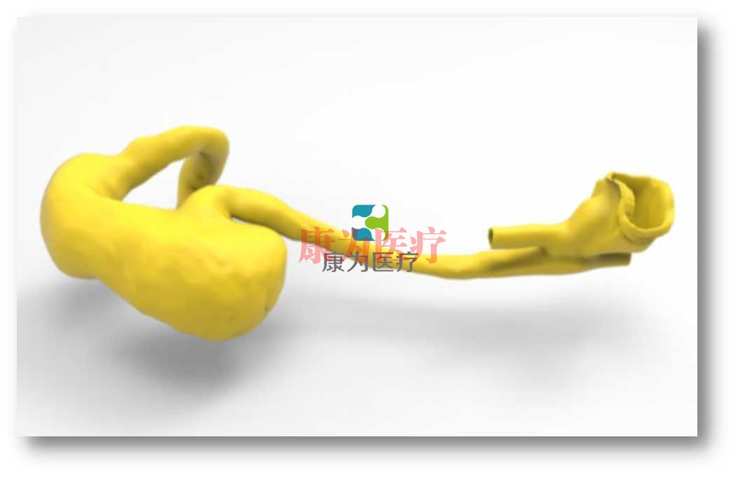 胃肠内镜介入培训Manbo万博体育,胃肠内镜介入模拟系统