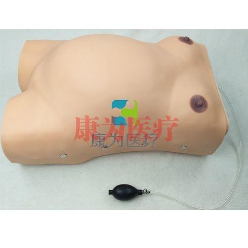 高级电脑孕妇检查威廉希尔,电子孕妇腹部触诊威廉希尔