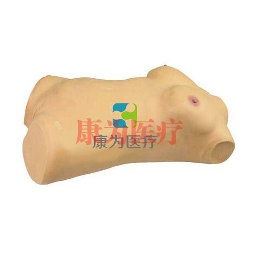 乳房检查及妇科检查训练标准化模拟病人,乳房检查及妇科检查模拟人,乳房检查及妇科检查威廉希尔