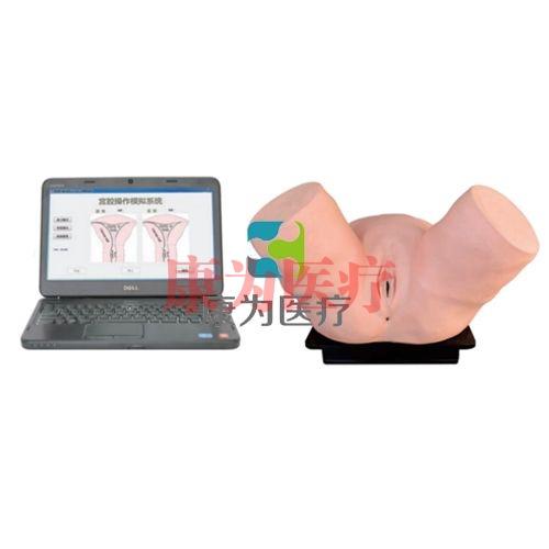 智能化诊断刮宫操作训练系统,智能化诊断刮宫操作系统,高级智能刮宫操作系统