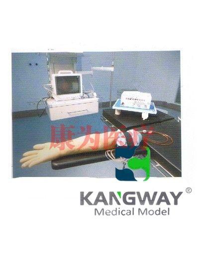 """""""康为医疗""""高级电动脉搏式手臂动脉及静脉穿刺练习Manbo万博体育(技术参数)"""