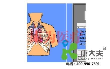虚拟心肺听诊