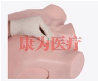胸腔引流和针刺减压训练器