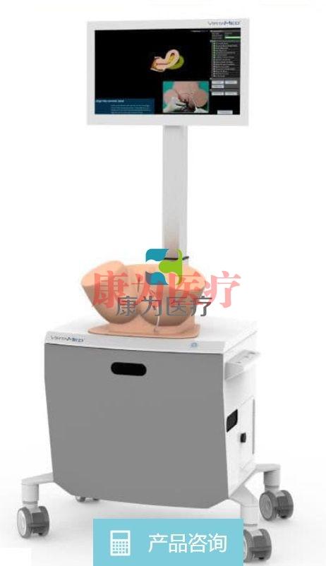宫内节育器放置模拟器 / 胚胎移植 / 工作站