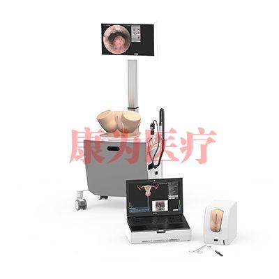 VIRTAMED HystSim宫腔镜模拟器,宫腔镜手术模拟训练系统