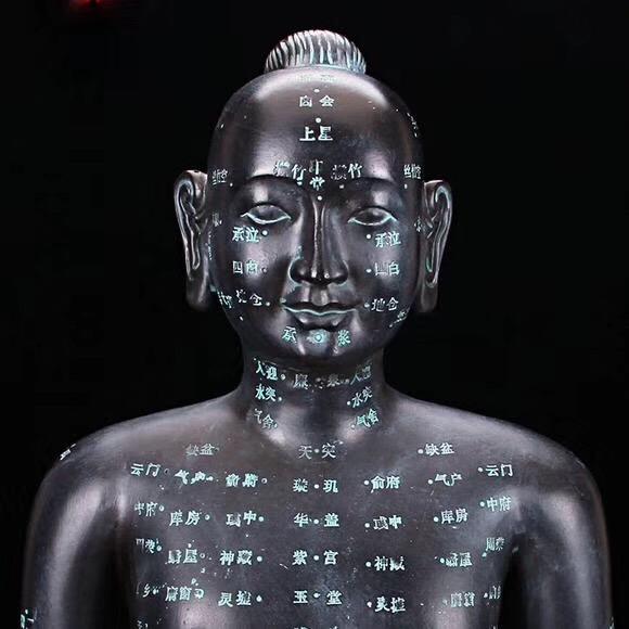 中医教学仪器威廉希尔生产厂家 Tcm