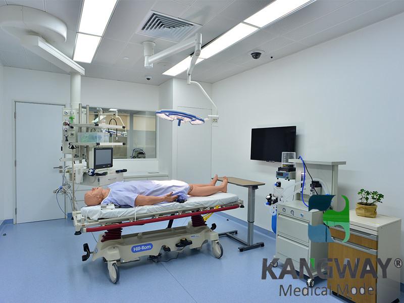 全国大学生临床技能大赛医学模型