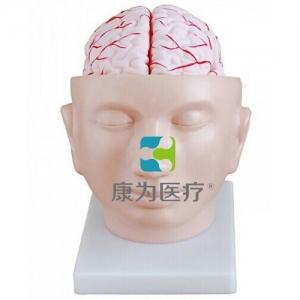 """""""康为医疗""""头部附脑动脉betway必威手机版中文版"""