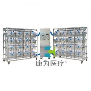 """""""康为医疗""""普通型豚鼠IVC笼具KDF/CR16笼一拖二(PSU)"""