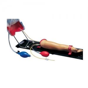 德国3B Scientific®一岁大幼童注射训练手臂威廉希尔