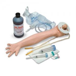 德国3B Scientific®静脉注射用手臂威廉希尔- 5岁大儿童