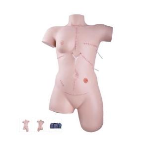 德国3B Scientific®伤口护理和包扎训练威廉希尔