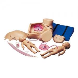德国3B Scientific®婴儿出生威廉希尔