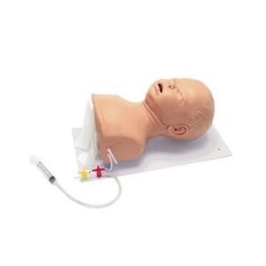 德国3B Scientific®高级婴儿插管威廉希尔,头部具有固定板