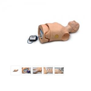 德国3B Scientific®高级心肺复苏与除颤训练威廉希尔