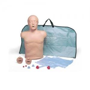 德国3B Scientific®心肺复苏(CPR)躯干威廉希尔
