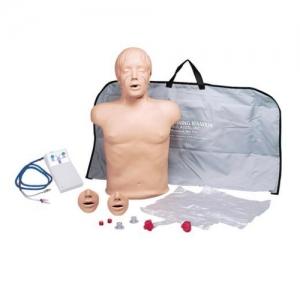 德国3B Scientific®Brad™ 紧凑型心肺复苏训练人体模型,带电子显示装置