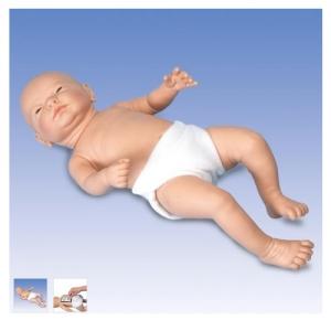 德国3B Scientific®Ready-or-Not-Tot® 互动婴儿Manbo万博体育,男婴