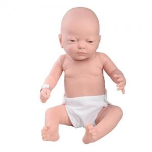 德国3B Scientific®婴儿护理Manbo万博体育,男