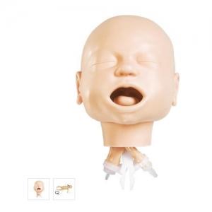 德国3B Scientific®婴儿气道管理训练威廉希尔