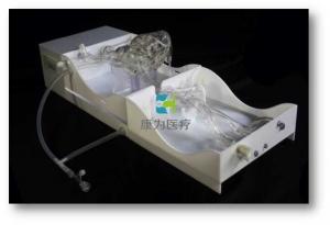 结构性心脏病介入模拟器,结构性心脏病手术介入模拟系统