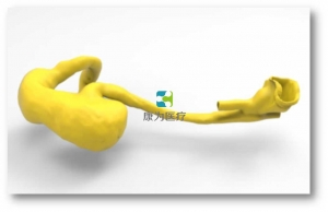 胃肠内镜介入培训模型,胃肠内镜介入模拟系统