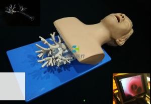 呼吸介入-纤支镜介入模拟器,高仿真模拟支气管镜Manbo万博体育