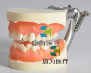 """""""康为医疗""""国际口腔医师资格考试拔牙模型,口腔执业医师资格考试拔牙模型厂家直销"""
