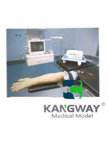 """""""康为医疗""""高级电动脉搏式手臂动脉及静脉穿刺练习ballbetapp下载(技术参数)"""
