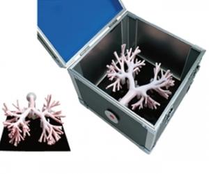 支气管镜训练模拟器