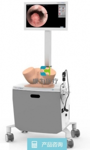 子宫镜检查内窥镜式模拟器 / 培训 / 微创手术虚拟训练系统