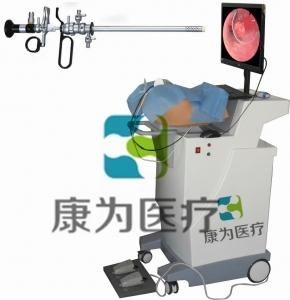 HYST SURGERY高端宫腔镜手术模拟训练系统