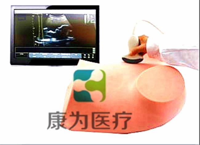 超聲引導下羊膜穿刺術訓練模型