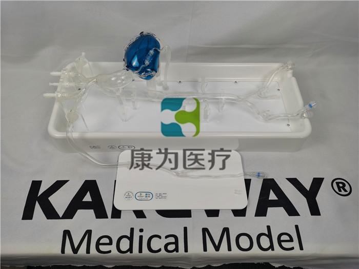 冠脉介入模拟器,冠状动脉介入手术模块