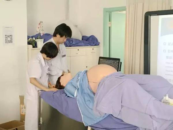 臀位外倒转术模拟训练腹部模型